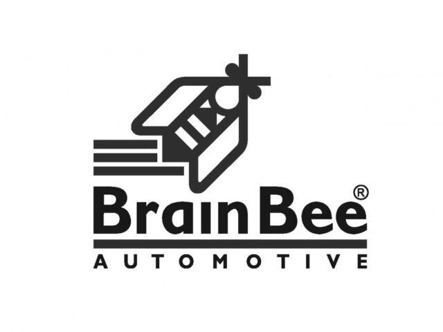 Brainbee-35thpavtk41hihgvup9h4w