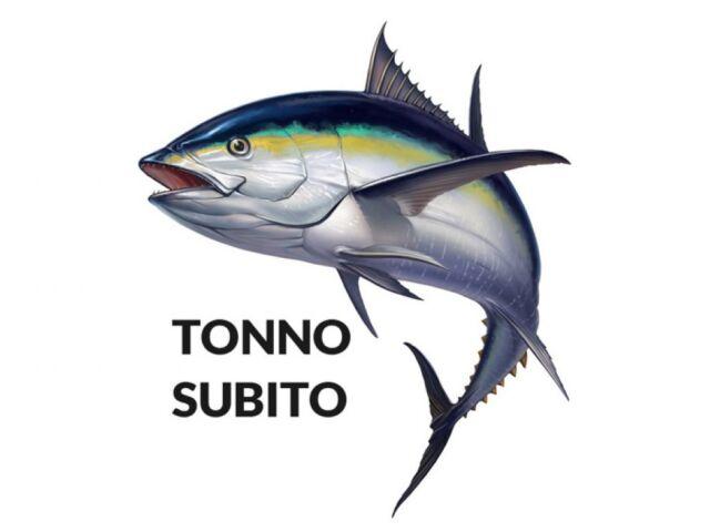 Tonno-cornice-36nh7mqyoknh2cfgk6io00